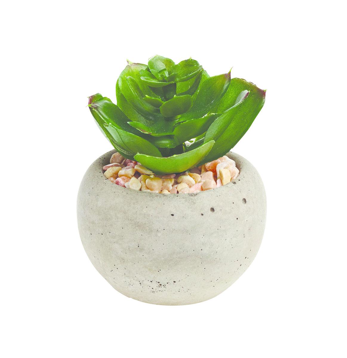 Растение искусственное Gardman, в горшке, 6 х 6 х 8,5 см доска для заметок gardman love heart с мелом 21 х 25 см