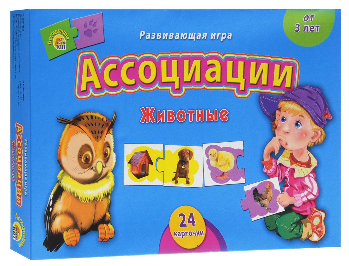 Рыжий Кот Развивающая игра Животные рыжий кот обучающие карточки космос