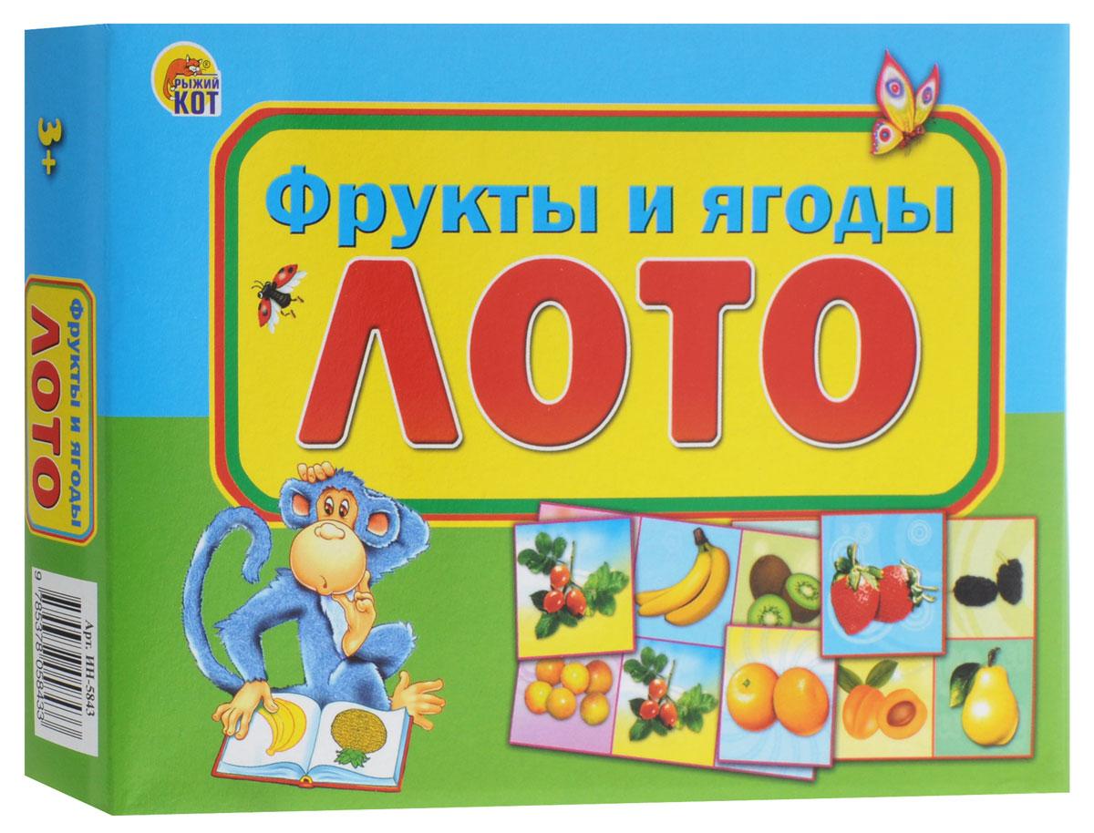 Рыжий Кот Настольная игра Лото Фрукты и ягоды настольные игры djeco игра лото дом