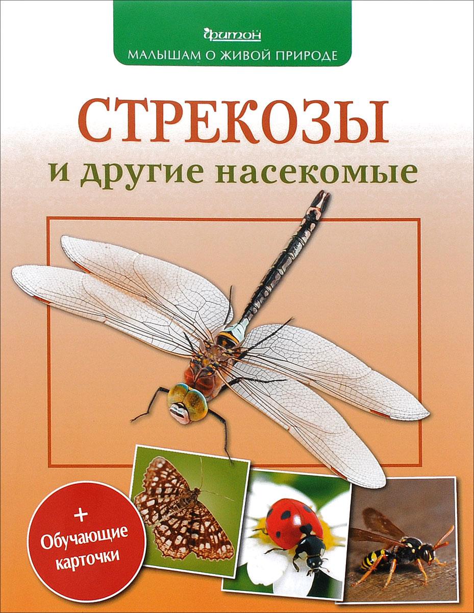 П. М. Волцит Стрекозы и другие насекомые