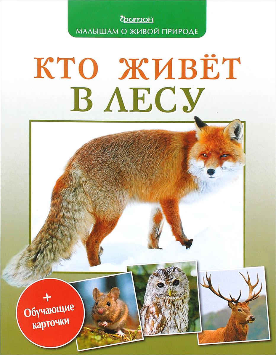 П. М. Волцит Кто живет в лесу
