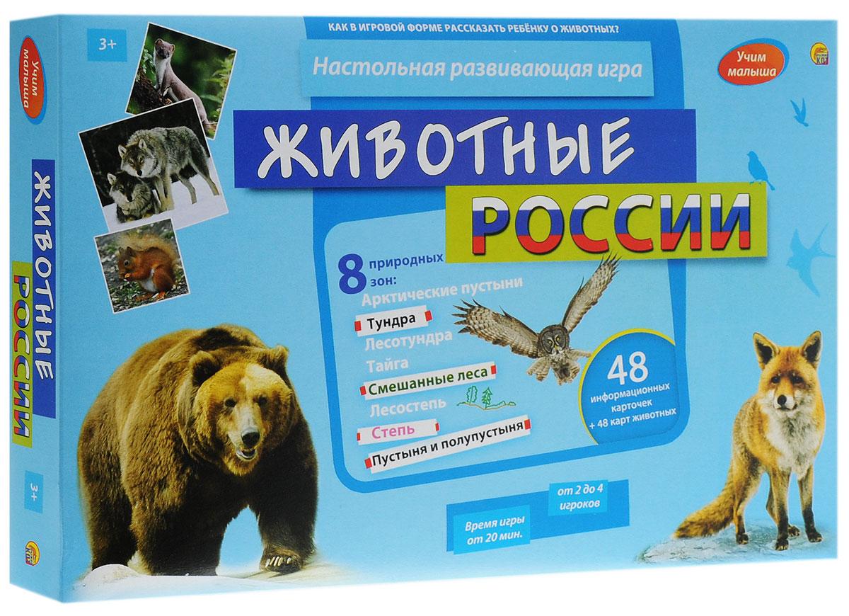 Рыжий Кот Настольная игра Животные России рыжий кот настольная игра времена года