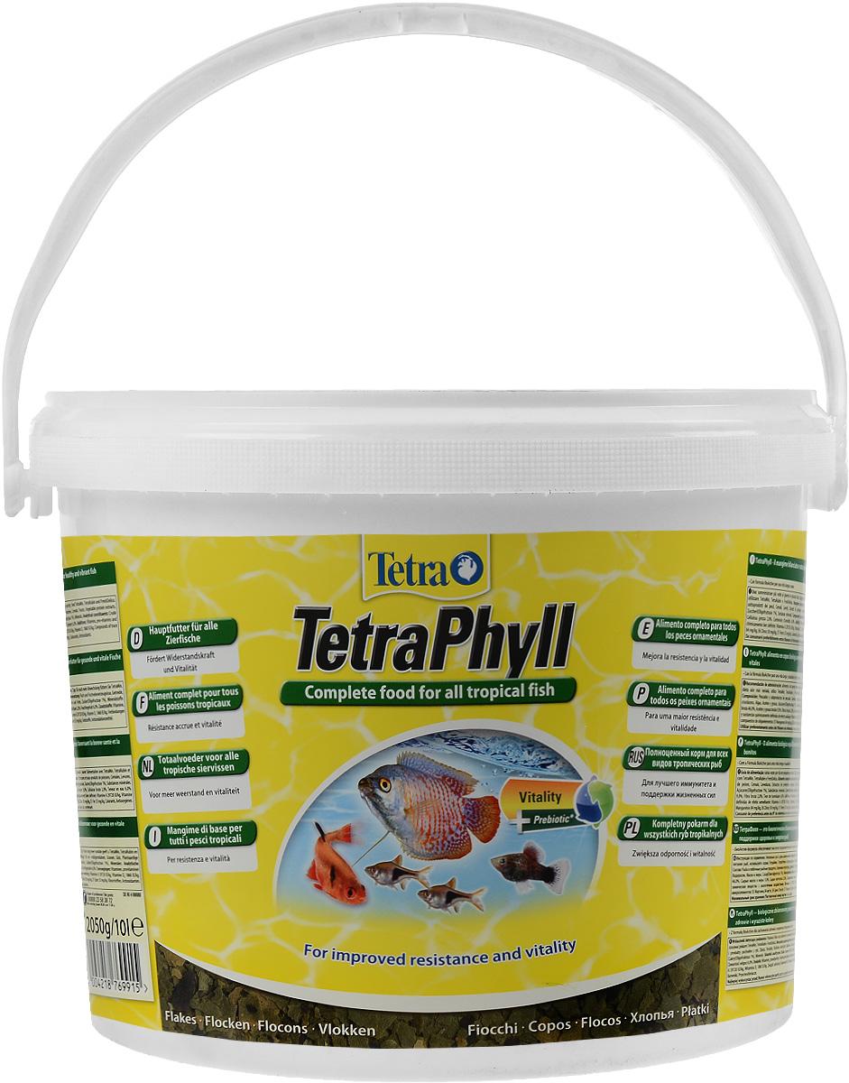 Корм Tetra TetraPhyll для всех видов тропических рыб, хлопья, 10 л (2,05 кг)769915Корм Tetra TetraPhyll - превосходная смесь хлопьев со специальным растительным комплексом для полноценного питания и ежедневного кормления. Идеальный корм для всех травоядных тропических рыб. Высокое содержание растительных компонентов способствует улучшению здоровья и поддержанию жизненных сил рыб. Незаменимые волокна стимулируют пищеварение, что особенно необходимо травоядным рыбам. Запатентованная БиоАктив-формула обеспечивает высокую продолжительность жизни и хорошее здоровье рыб. Состав: рыба и побочные рыбные продукты, зерновые культуры, дрожжи, экстракты растительного белка, моллюски и раки, водоросли, масла и жиры, сахар (олигофруктоза 1%), минеральные вещества. Аналитические компоненты: сырой белок 46%, сырые масла и жиры 9%, сырая клетчатка 2%, влага 6%. Добавки: витамины, провитамины и химические вещества с аналогичным воздействием: витамин A 29720 МЕ/кг, витамин Д3 1860 МЕ/кг. Комбинации микроэлементов: Е5 марганец 84 мг/кг, Е6 цинк 50 мг/кг, Е1 железо 33 мг/кг. Красители, антиоксиданты. Товар сертифицирован.