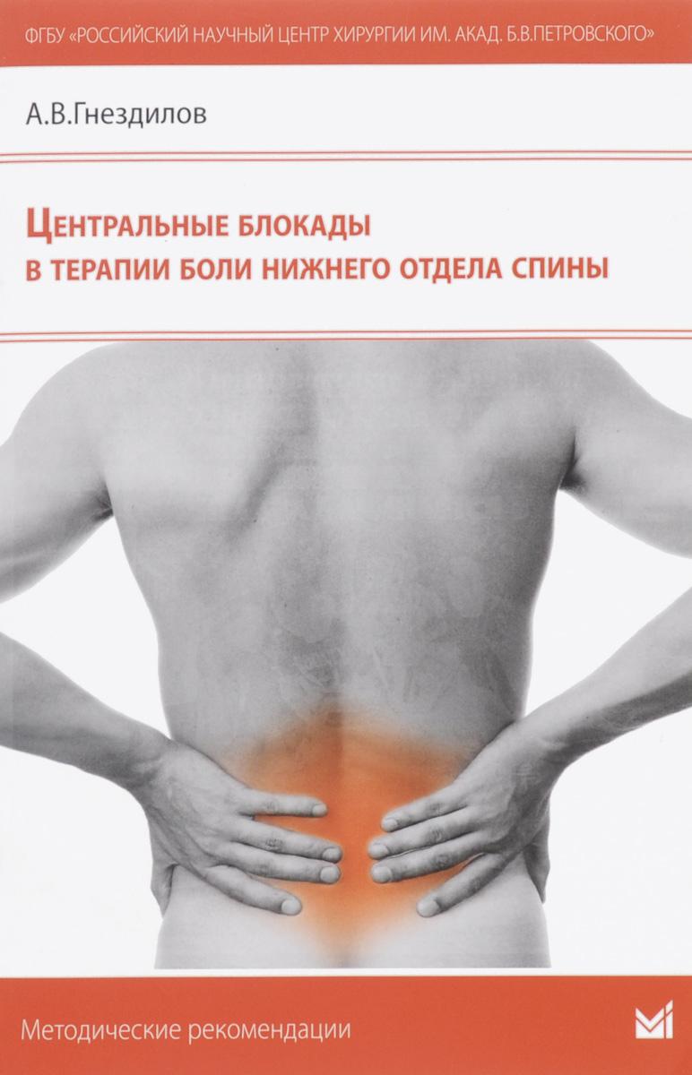Центральные блокады в терапии боли нижнего отдела спины. А. В. Гнездилов