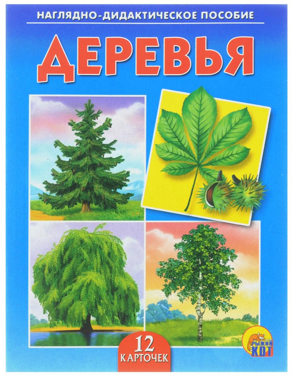 Рыжий Кот Обучающие карточки Деревья улыбка обучающие карточки деревья россии