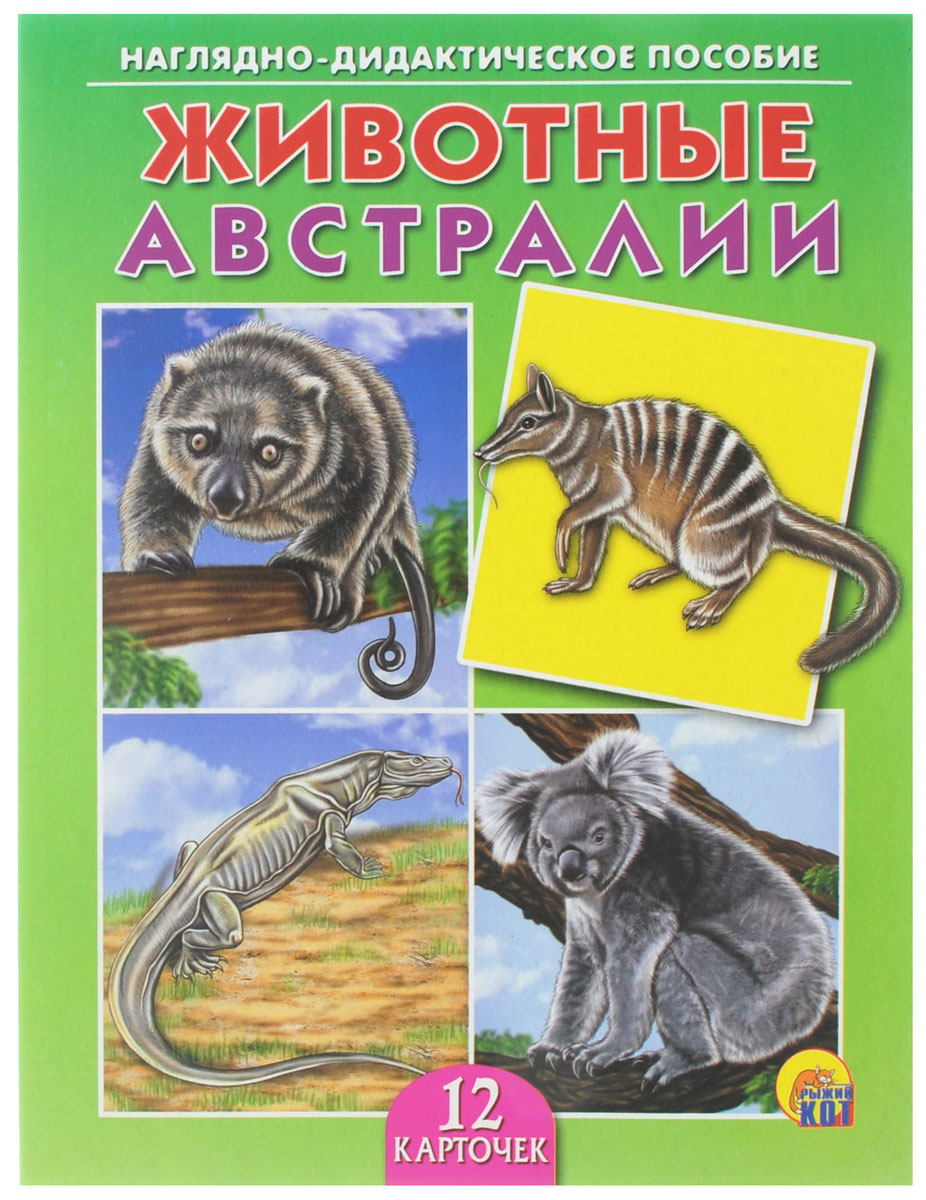 Рыжий Кот Обучающие карточки Животные Австралии улыбка обучающие карточки игрушки