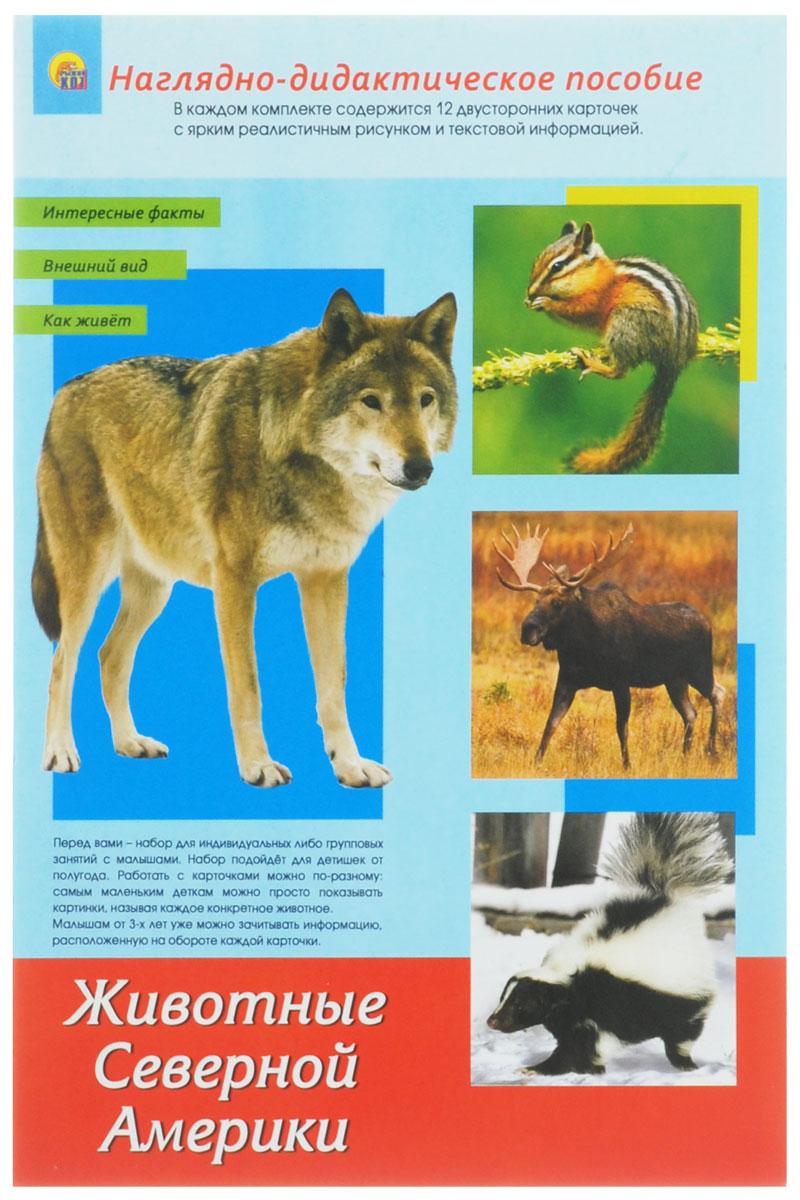 Рыжий Кот Обучающие карточки Дидактическое пособие Животные Северной Америки рыжий кот обучающие карточки космос