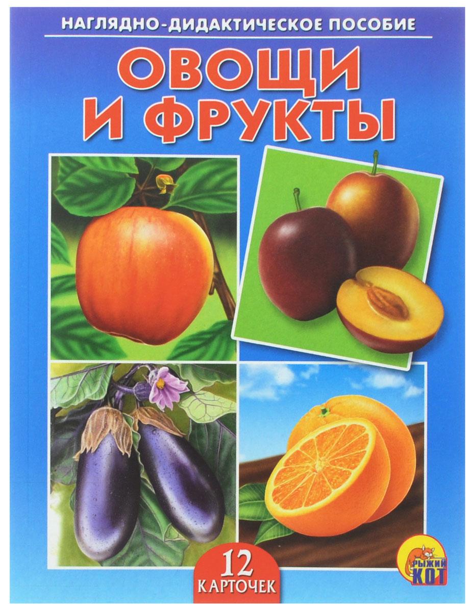 Рыжий Кот Обучающие карточки Овощи и фрукты улыбка обучающие карточки игрушки