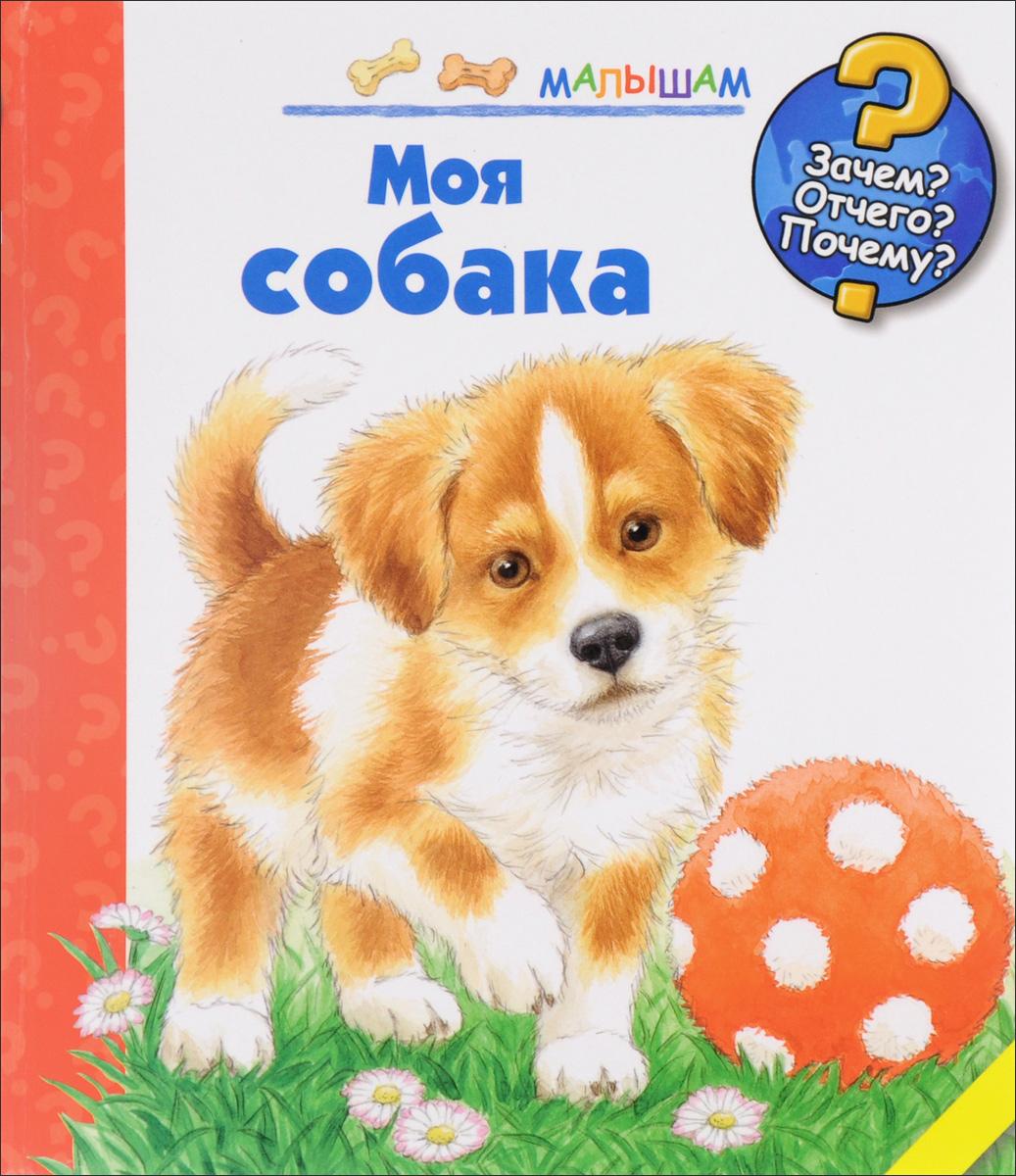 Патриция Меннен Моя собака картофельная собака