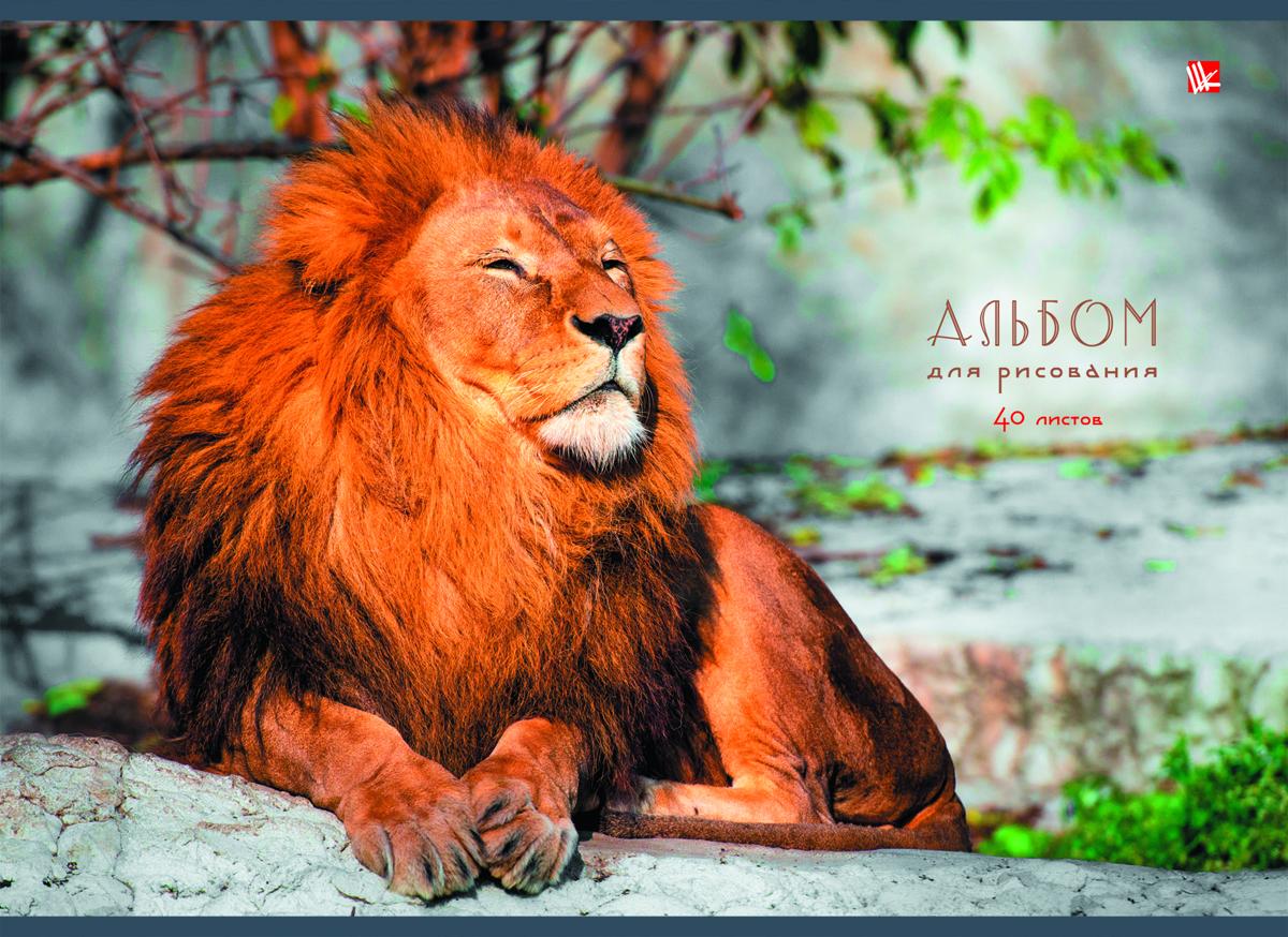 Listoff Альбом для рисования Царственный лев 40 листов кофта the north face кофта