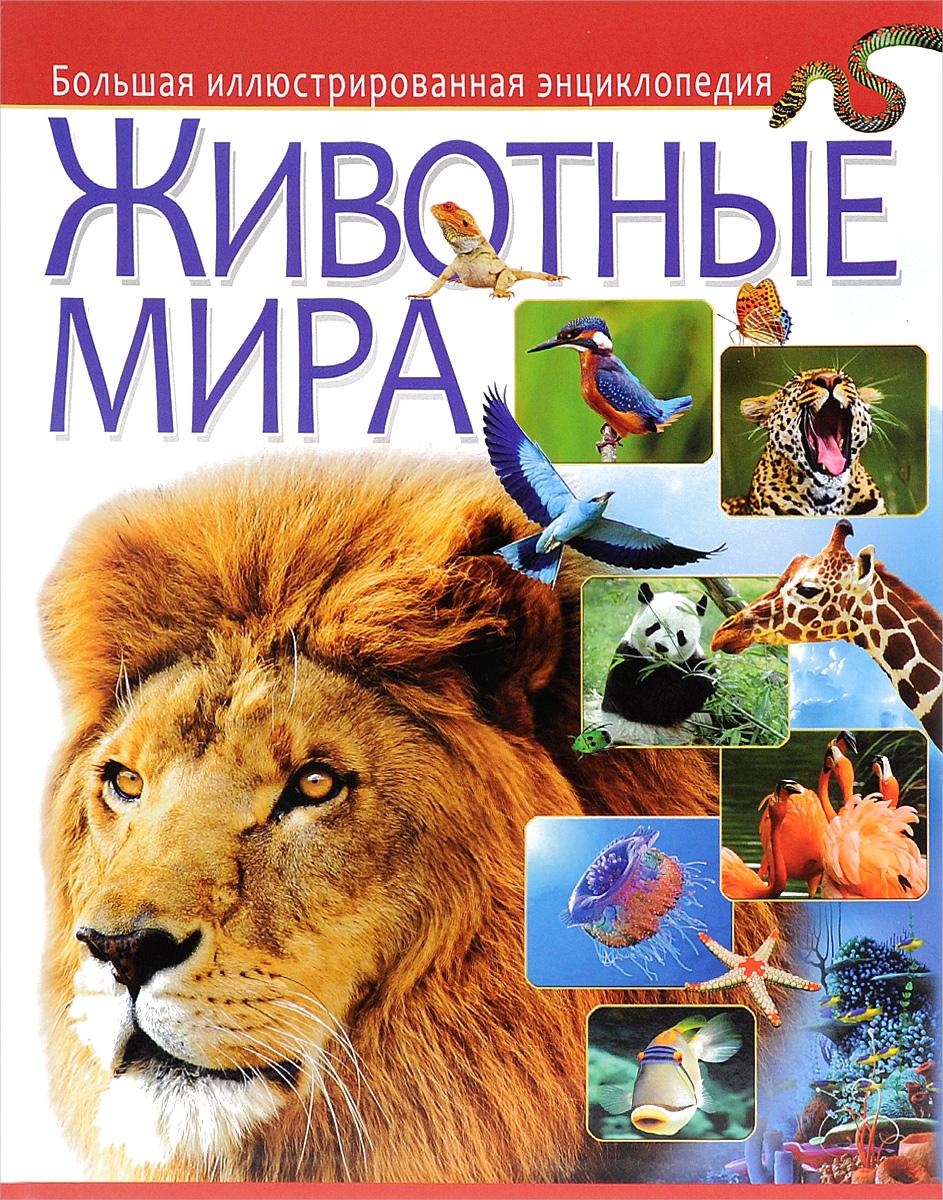 Животные мира. Большая иллюстрированная энциклопедия большая иллюстрированная энциклопедия в 32 томах том 5 бут вин