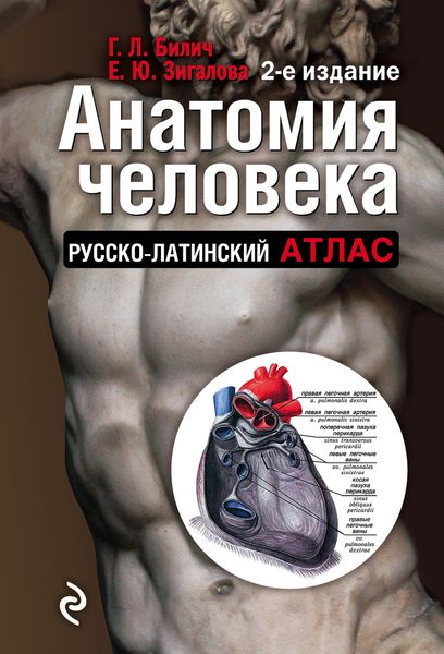 Билич Г.Л., Зигалова Е.Ю. Анатомия человека. Русско-латинский атлас билич г л зигалова е ю анатомия человека русско латинский атлас