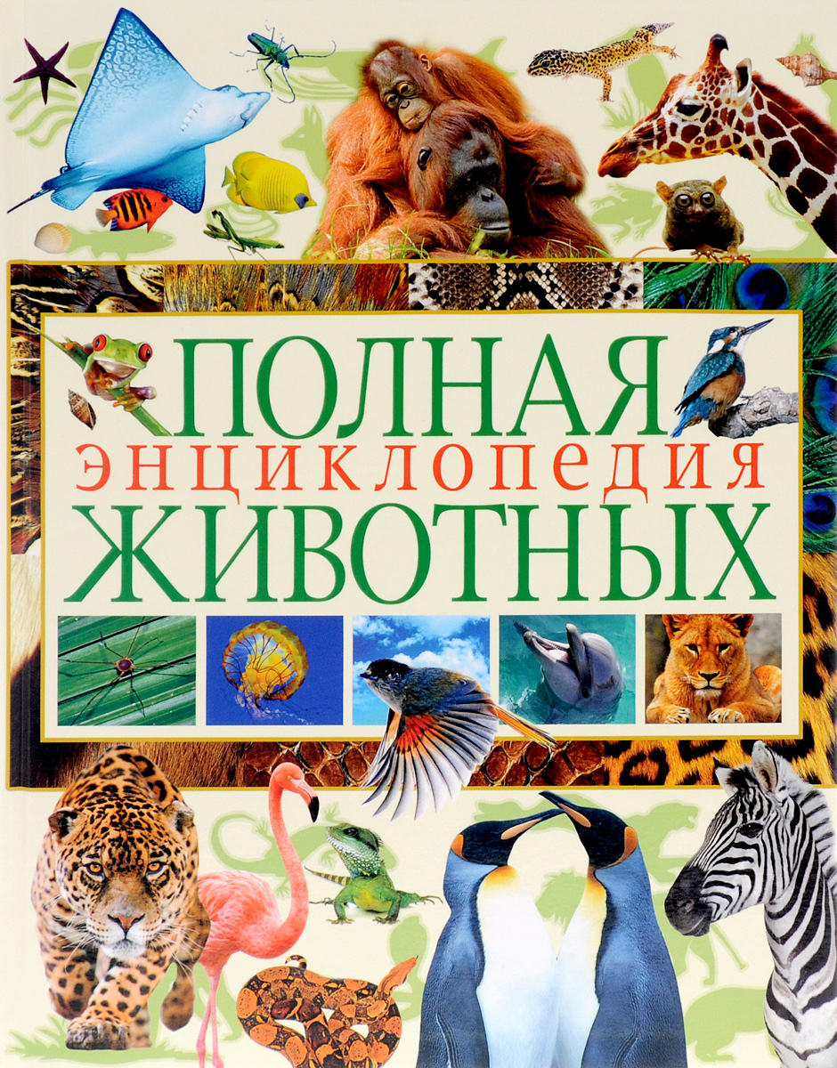 Полная энциклопедия животных бологова в ред моя большая книга о животных 1000 фотографий