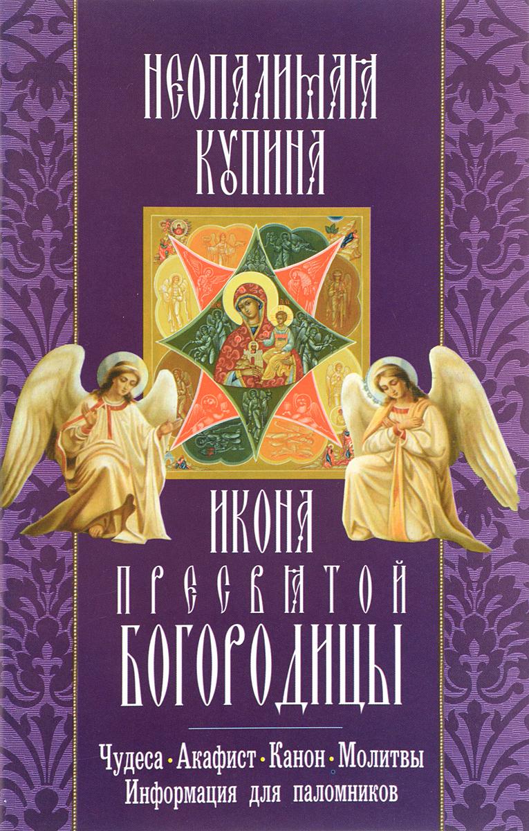 Икона Пресвятой Богородицы Неопалимая Купина икона янтарная неувядаемый цвет пресвятой богородицы иян 2 301