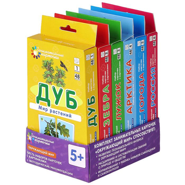 Айрис-пресс Обучающая игра Окружающий мир (комплект из 6 наборов по 48 карточек) айрис пресс обучающая игра занимательные карточки комплект из 6 наборов карточек с картинками
