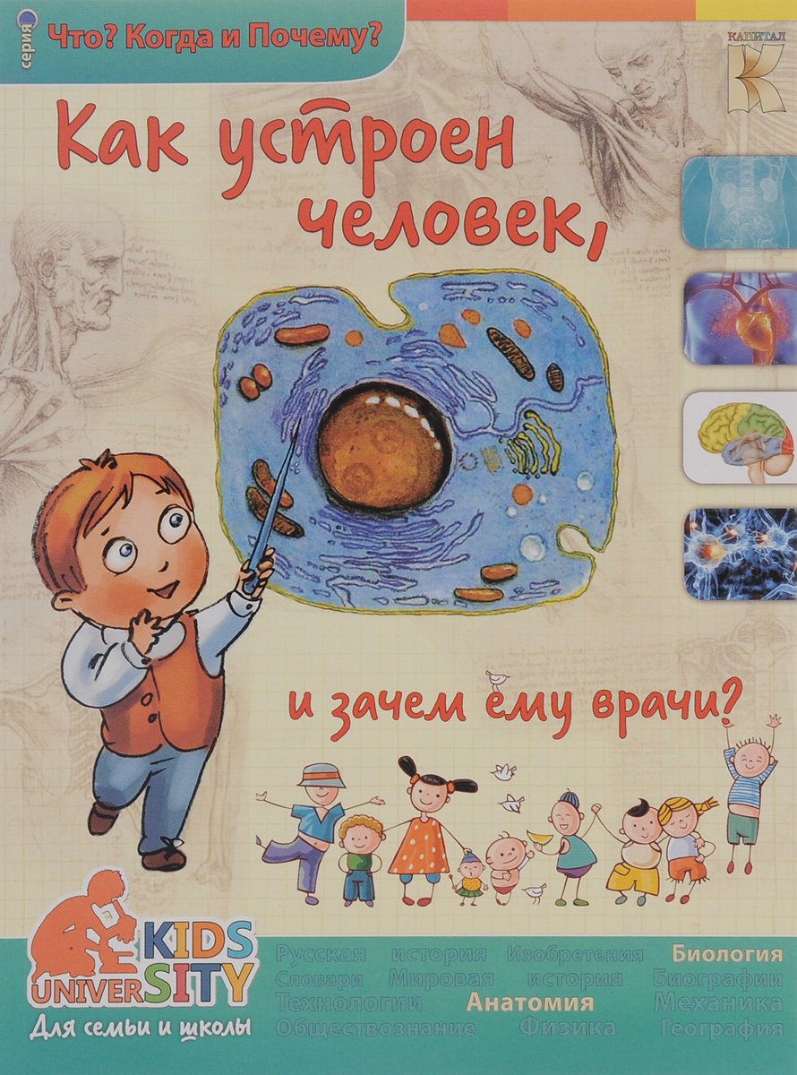 О. В. Соколова Как устроен человек и зачем ему врачи