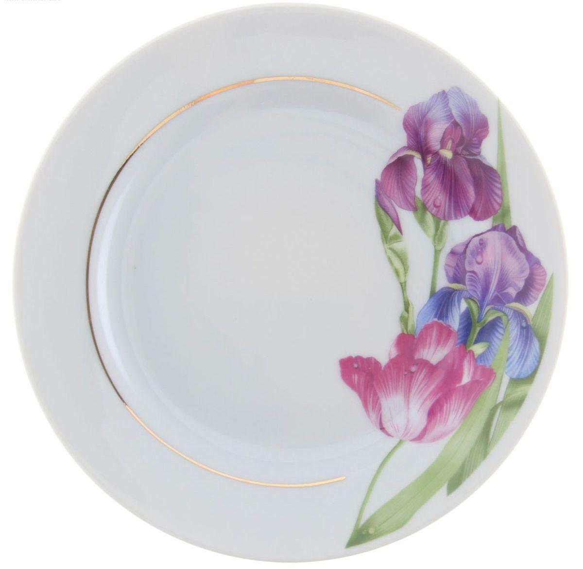 Тарелка мелкая Идиллия. Английская классика, диаметр 17 см1303947Мелкая тарелка Идиллия. Английская классика выполнена из высококачественного фарфора и украшена ярким рисунком. Она прекрасно впишется в интерьер вашей кухни и станет достойным дополнением к кухонному инвентарю. Тарелка Идиллия. Английская классика подчеркнет прекрасный вкус хозяйки и станет отличным подарком. Диаметр тарелки: 17 см.