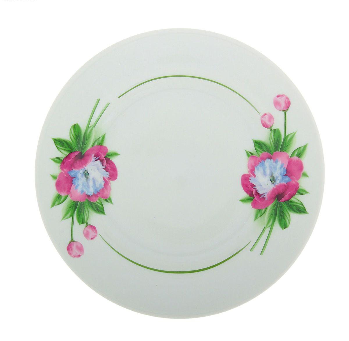 Тарелка мелкая Идиллия. Пион, диаметр 17 см. 507733507733Мелкая тарелка Идиллия. Пион выполнена из высококачественного фарфора и украшена ярким рисунком. Она прекрасно впишется в интерьер вашей кухни и станет достойным дополнением к кухонному инвентарю. Тарелка Идиллия. Пион подчеркнет прекрасный вкус хозяйки и станет отличным подарком. Диаметр тарелки: 17 см.