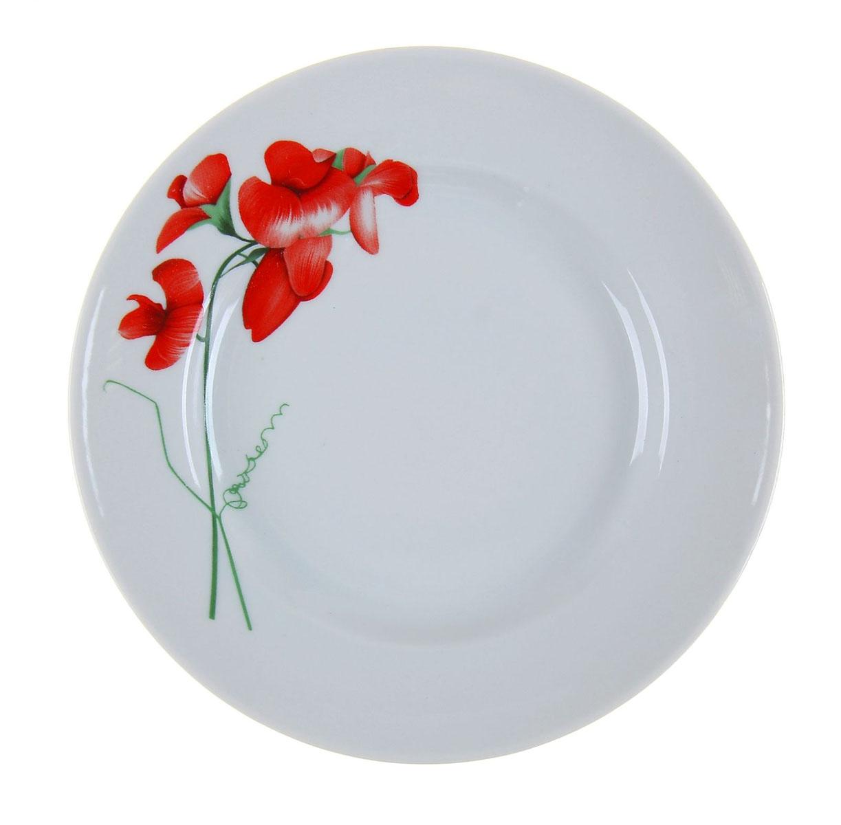 Тарелка мелкая Идиллия. Рубин, диаметр 20 см тарелка идиллия космея диаметр 24 см