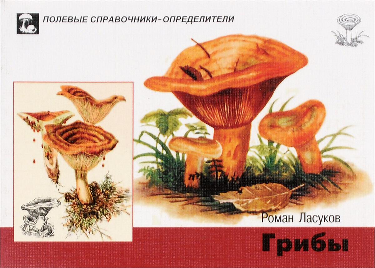 Роман Ласуков Грибы. Карманный определитель мицелий грибов шампиньон королевский 60мл
