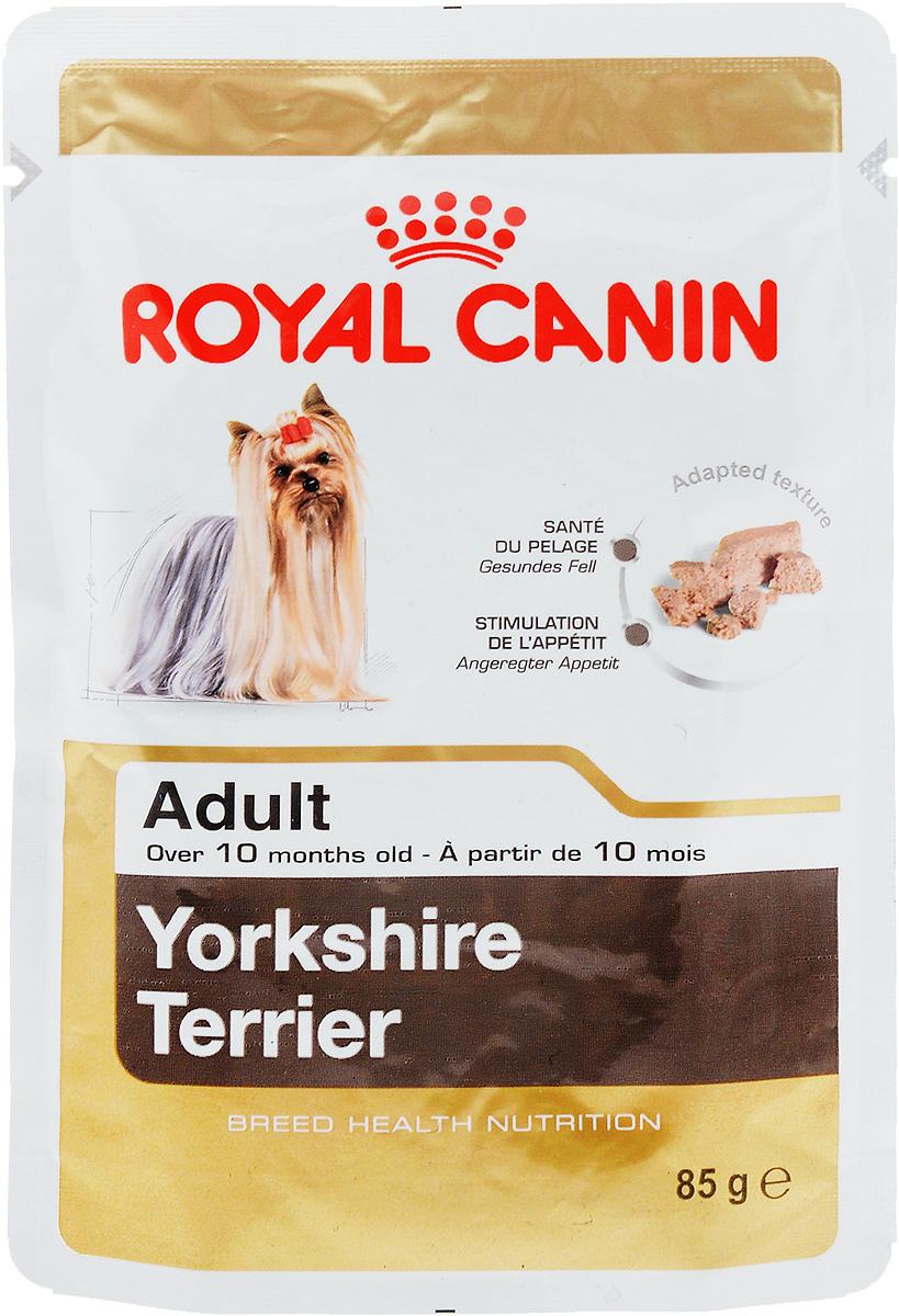 Консервы Royal Canin Yorkshire Terrier Adult, для собак породы йоркширский терьер в возрасте старше 10 месяцев, паштет, 85 г60580Консервы Royal Canin Poodle Adult специально созданы для собак породы йоркширский терьер в возрасте старше 10 месяцев. Йоркширский терьер - это сказочное создание, которое очаровывает с первой минуты знакомства с ним. Тоненькие, хрупкие и изящные йорки в силу своей физиологии нуждаются в максимальном поступлении в организм аминокислот, необходимых для развития шерсти и ее быстрого роста.Здоровая шерсть. Эта эксклюзивная формула поддерживает здоровье и красоту шерсти йоркширского терьера. Вкусовая привлекательность. Благодаря высокой вкусовой привлекательности корм способен удовлетворить потребности даже самых привередливых собак.Особый комплекс с питательными веществами помогает сохранить здоровье собаки в зрелом возрасте и способствует долголетию.Состав: мясо и мясные субпродукты, злаки, субпродукты растительного происхождения, масла и жиры, минеральные вещества, углеводы. Добавки (в 1 кг): Витамин D3: 189 ME, Железо: 27 мг, Йод: 0,15 мг, Марганец: 8,4 мг, Цинк: 84 мг..Товар сертифицирован.