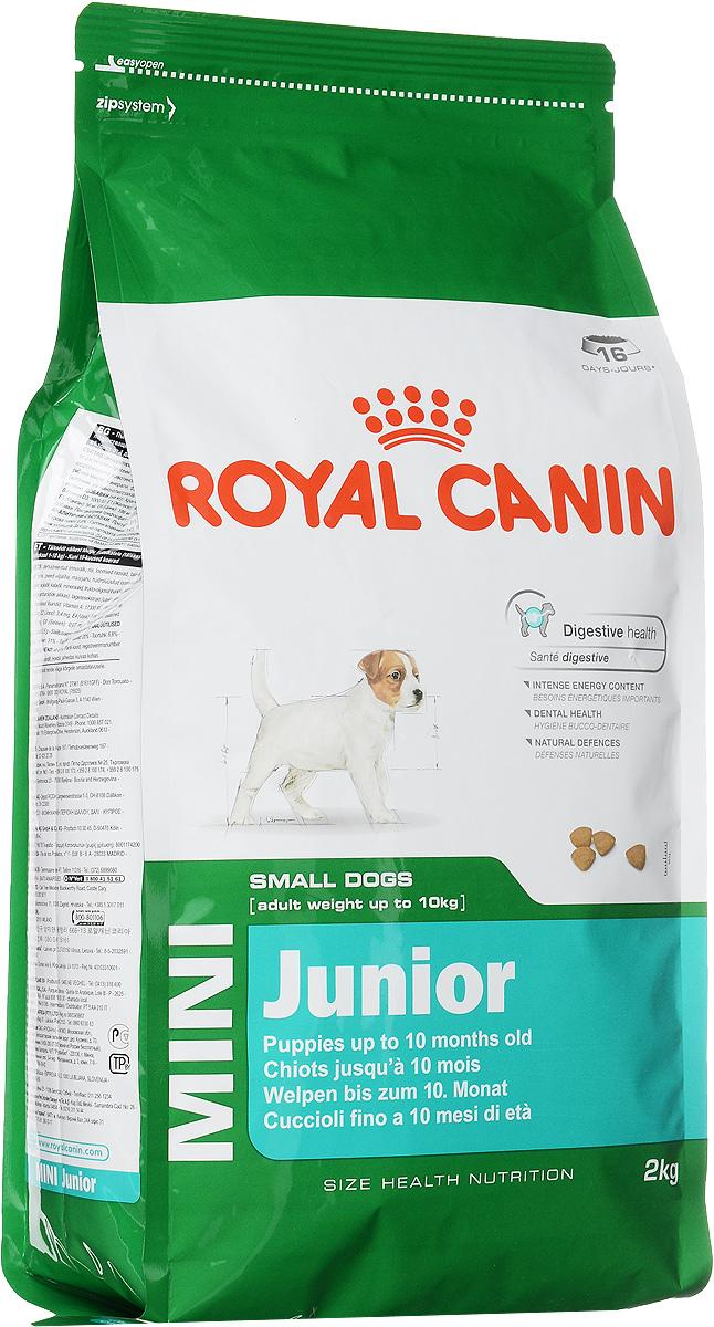 Корм сухой Royal Canin Mini Junior, для щенков мелких пород в возрасте от 2 до 10 месяцев, 2 кг43779Royal Canin Mini Junior - это полнорационный сухой корм для щенков мелких собак (вес взрослой собаки от 1 до 10 кг) в возрасте от 2 до 10 месяцев.Безопасность пищеварения. Эксклюзивная комбинация питательных веществ для оптимальной безопасности пищеварительной системы (белки L.I.P.) и баланса кишечной флоры (пребиотики, ФОС, МОС). Поддержание оптимальной консистенции стула у щенков.Высокое содержание энергии. Удовлетворяет энергетические потребности щенков в период роста, защищает чувствительную пищеварительную систему, обладает высокой вкусовой привлекательностью (даже для привередливых в питании щенков).Здоровье зубов. Помогает замедлить образование зубного налета благодаря полифосфату натрия, который связывает кальций, содержащийся в слюне.Естественные механизмы защиты. Способствует поддержанию естественных механизмов защиты, благодаря запатентованному комплексу антиоксидантов. Состав: дегидратированные белки животного происхождения (птица), рис, животные жиры, изолят растительных белков, кукуруза, свекольный жом, кукурузная мука, гидролизат белков животного происхождения, кукурузная клейковина, соевое масло, рыбий жир, минеральные вещества, фруктоолигосахариды, гидролизат дрожжей (источник мaннановых олигосахаридов), экстракт бархатцев прямостоячих (источник лютеина).Пищевые добавки на 1 кг: витамин А 17300 МЕ, витамин D3 1000 МЕ, железо 43 мг, йод 3,4 мг, марганец 56 мг, цинк 186 мг, селен 0,07 мг, триполифосфат натрия 3,5 г, консервант, антиокислители. Товар сертифицирован.