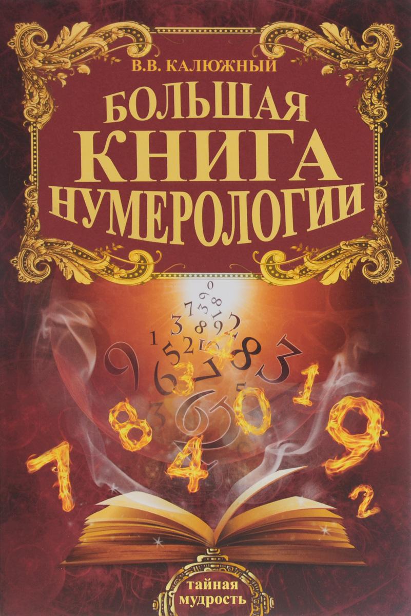 В. В. Калюжный Большая книга нумерологии