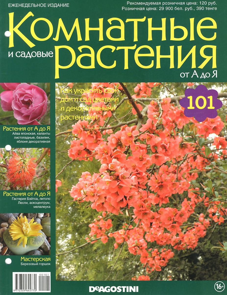 Журнал Комнатные и садовые растения. От А до Я №101 год до школы от а до я тетрадь по подготовке к школе