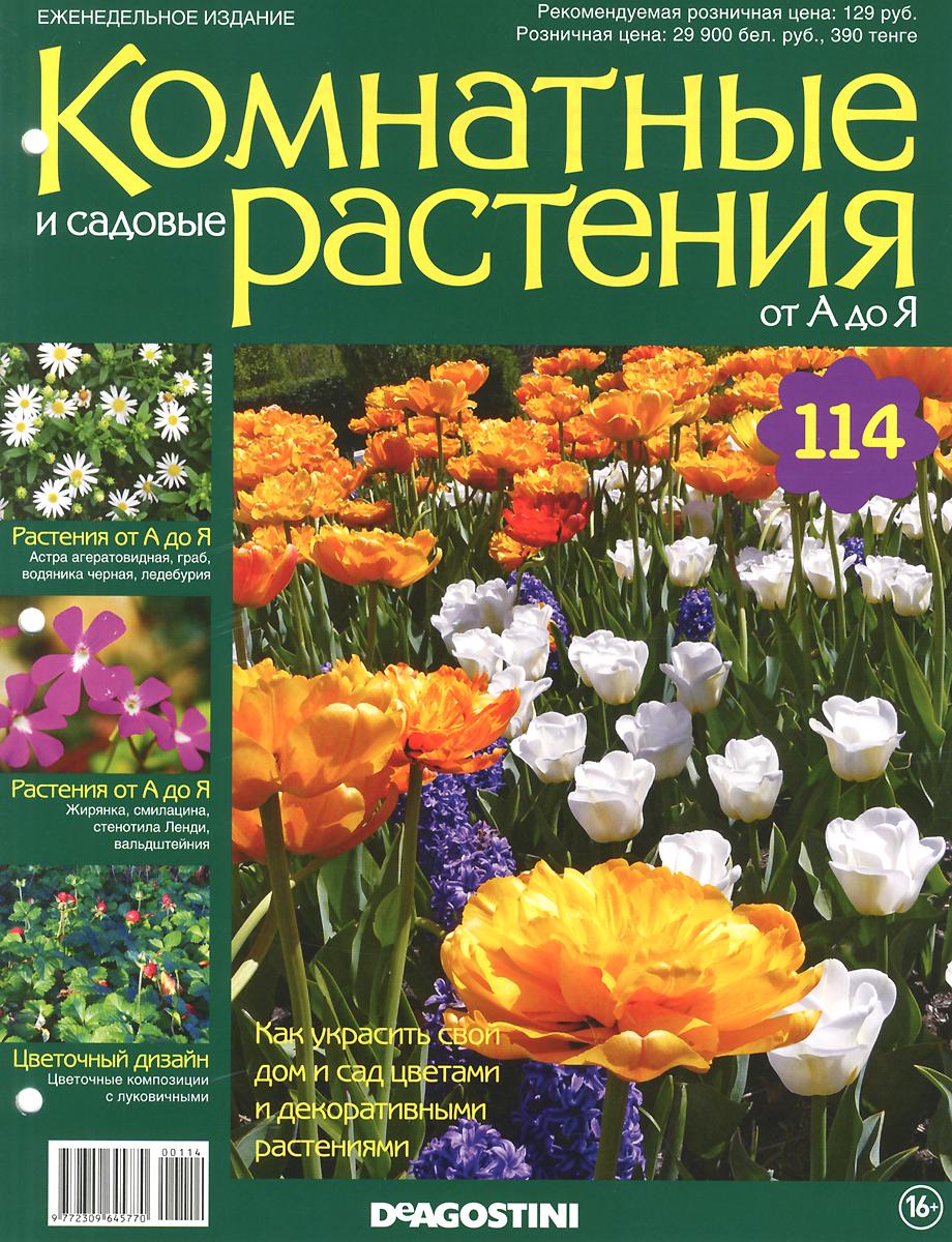 Журнал Комнатные и садовые растения. От А до Я №114 журнал комнатные и садовые растения от а до я 141