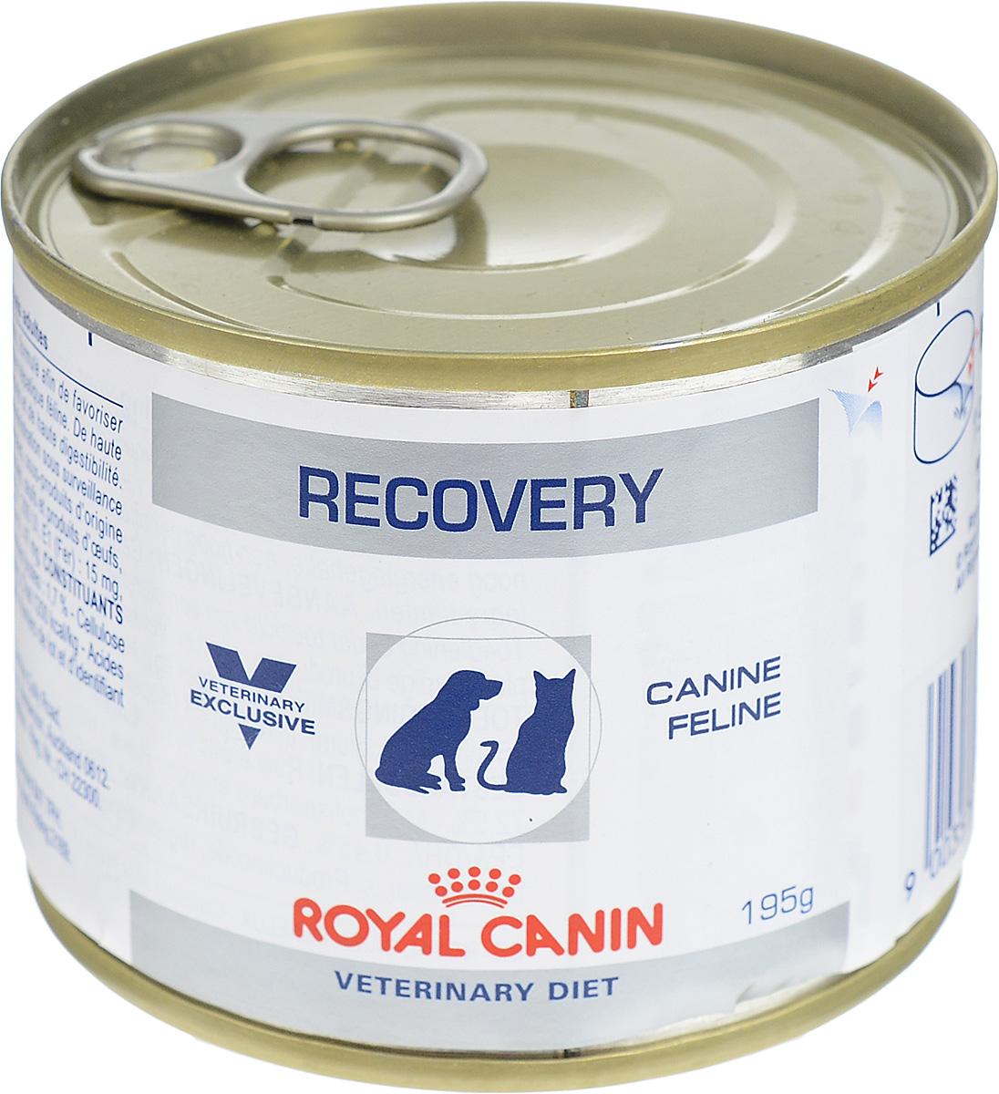 Консервы для собак и кошек Royal Canin Recovery, в период анорексии и выздоровления, 195 г27549Полнорационный диетический корм Royal Canin Recovery предназначен для кошек и собак в период восстановления после болезни и интенсивной терапии. Показания:- Анорексия – нарушения питания. - Поддержание организма после операций и во время интенсивной терапии. - Период выздоровления. - Искусственное энтеральное кормление. - Липидоз печени у кошек. - Беременность, лактация, рост. Высокое содержание энергии в диетическом корме Royal Canin Recovery помогает компенсировать уменьшение объема потребляемого корма у привередливых в еде животных.Консистенция позволяет легко вводить его шприцем или с помощью зонда.У собак и кошек, находящихся в стационаре, нередко наблюдают снижение аппетита и потерю массы тела. Консервы обладают высокой вкусовой привлекательностью, благодаря чему животные охотно их поедают.Комплекс антиоксидантов синергичного действия (витамины Е и С, таурин, лютеин) помогает противостоять повреждению клеток под действием окислительного стресса и способствует укреплению иммунной системы. Состав: печень птицы, свинина, мясо птицы, обработанный кукурузный крахмал, целлюлоза, казеинат кальция, рыбий жир, минеральные вещества, сухой яичный белок, подсолнечное масло, таурин, каррагенан, фруктоолигосахариды (ФОС), экстракт бархатцев прямостоячих (источник лютеина), семена подорожника, гидролизат дрожжей (источник маннановых олигосахаридов), DL-метионин, микроэлементы (в том числе в хелатной форме), витамины. Добавки (на кг): витамин D3 - 300 МЕ, железо - 15 мг, йод - 0,16 мг, медь - 1 мг, марганец - 4,5 мг, цинк - 47 мг.Питательные вещества на 100 г: белки 14%, жиры 6,2%, углеводы 2,6%, минеральные вещества 1,7%, клетчатка пищевая 2%, влажность 72,5%.Энергетическая ценность на 1 кг: для собак - 1180 ккал, для кошек - 1200 ккал.Товар сертифицирован.Чем кормить пожилых собак: советы ветеринара. Статья OZON ГидЧем кормить пожилых кошек: советы ветеринара. Статья OZON Гид