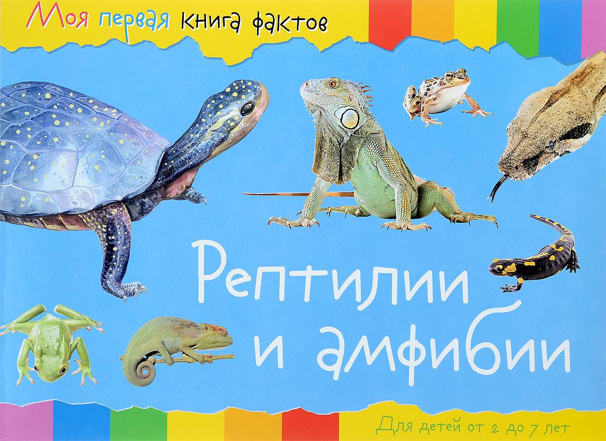 Рептилии  амфибии