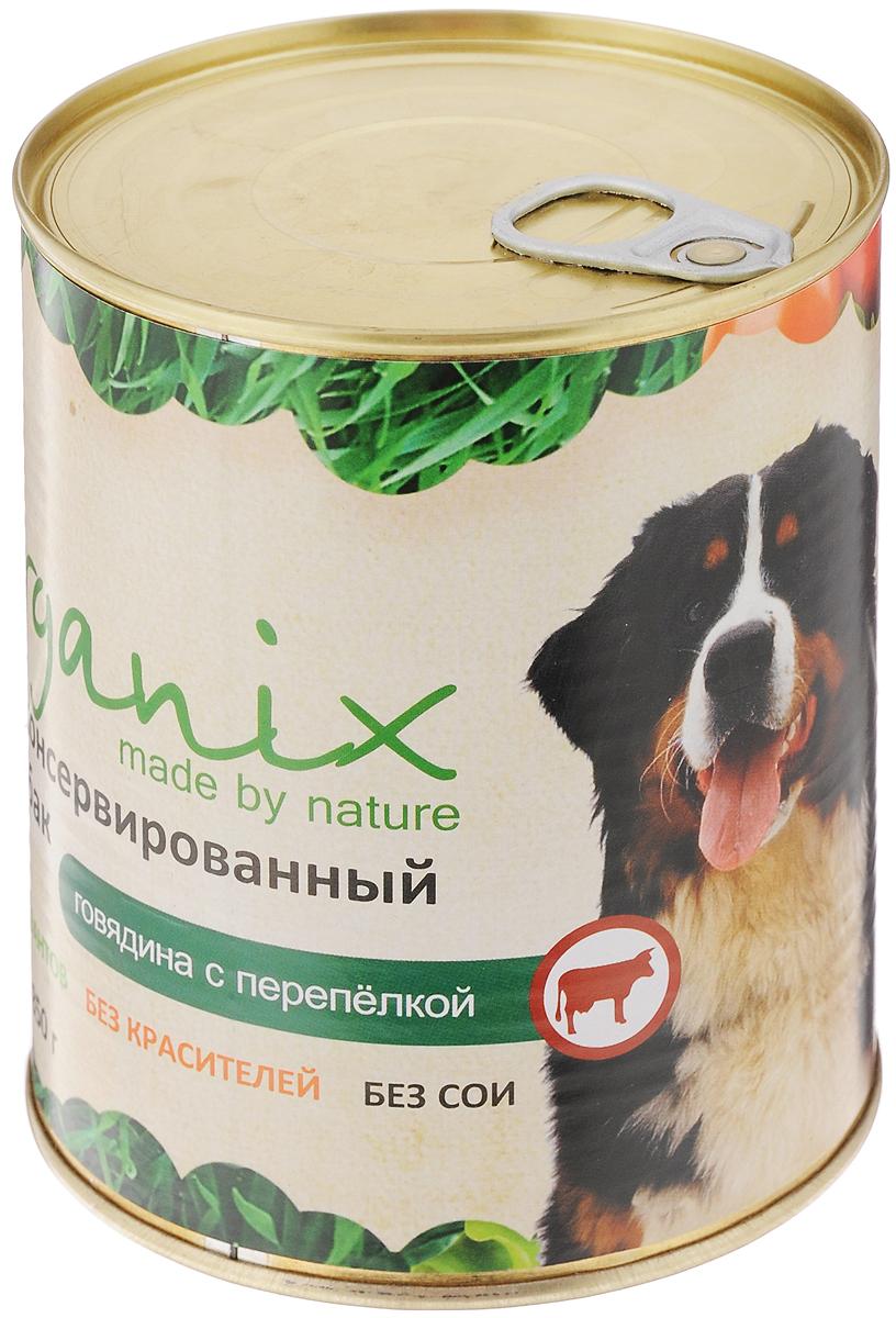 Консервы для собак Organix, говядина с перепелкой, 850 г19671Консервы для собак Organix - вкусный консервированный корм для собак с говядиной и перепелкой. Изготовлен из 100% свежего мяса различного вида. Не содержит искусственных красителей, ароматизаторов или консервантов, ГМО. Специальная обработка помогает сохранять корм длительное время. Корм приготовлен из тщательно отобранных сортов мяса, которые внесут приятное разнообразие в меню вашей собаки. Корм разработан для обеспечения всех питательных потребностей взрослых собак.Состав: говядина, рубец, мясо перепелок, масло растительное, мука костная, стабилизатор Е472с, соль, вода.Пищевая ценность (в 100 г продукта): белок - не менее 7,0 г, жир - не более 8,0 г.Энергетическая ценность (калорийность): 100 ккал/592 кДж.Товар сертифицирован.