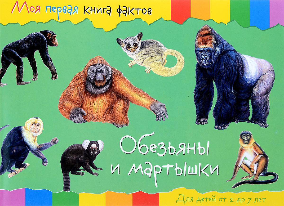 Обезьяны и мартышки nd play энциклопедия моя первая книга фактов обезьяны