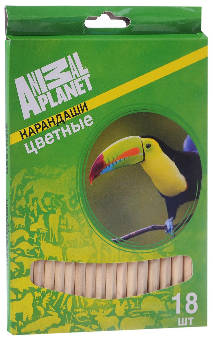 Action! Набор цветных карандашей Animal Planet Тукан 18 цветовAP-ACP105-18_1Цветные карандаши Action Animal Planet. Тукан откроют юным художникам новые горизонты для творчества, а также помогут отлично развить мелкую моторику рук, цветовое восприятие, фантазию и воображение. Традиционный шестигранный корпус изготовлен из натуральной древесины светлого цвета. Карандаши удобно держать в руках, а мягкий грифель не требует сильного нажима. Комплект включает 18 заточенных карандашей ярких насыщенных цветов.