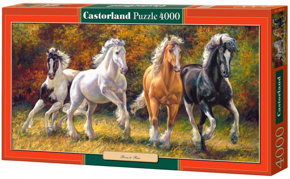 Castorland Пазл Лошади