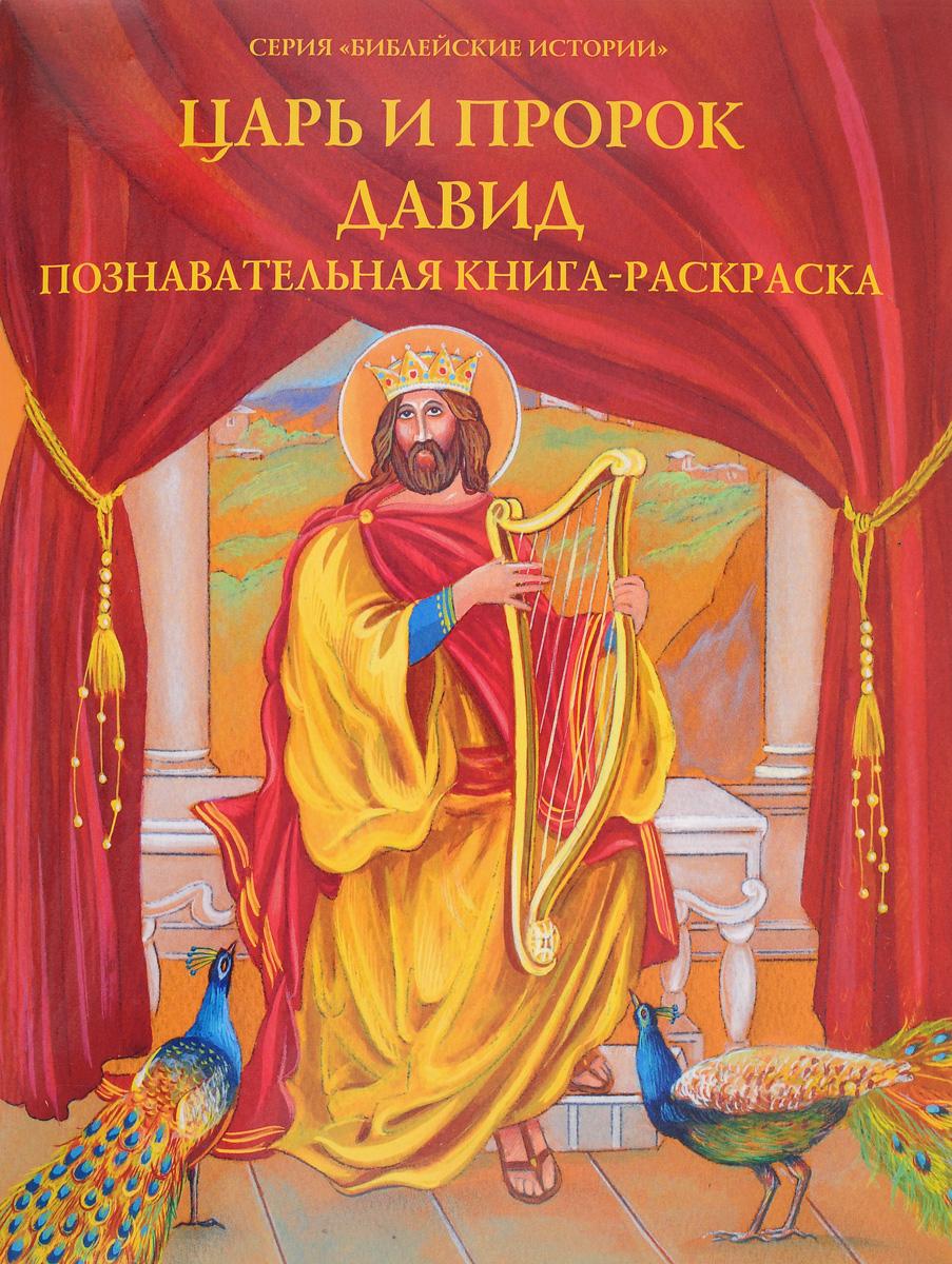 О. А. Соколова Царь и пророк Давид. Познавательная книга-раскраска о а соколова храбрый самсон познавательная книга раскраска