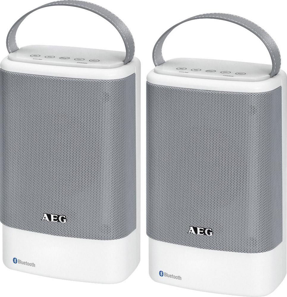 AEG BSS 4833, White Grey беспроводная акустическая система