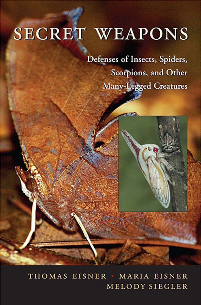 Secret Weapons: Defenses of Insects, Spiders, Scorpions, and Other Many-Legged Creatures henk tennekes the simple science of flight – from insects to jumbo jets