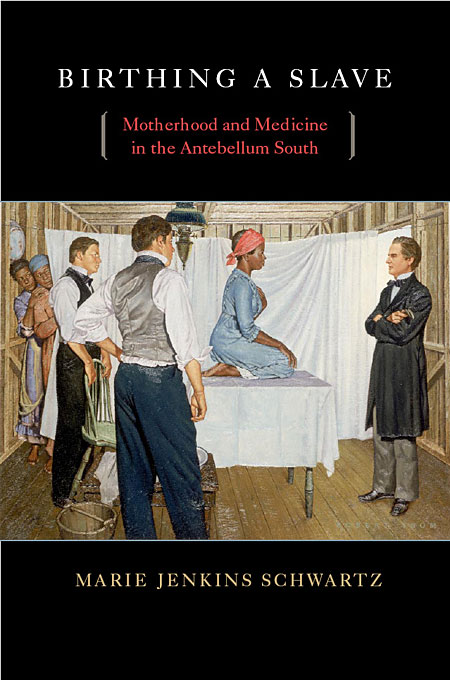 Birthing a Slave – Motherhood and Medicine in the Antebellum South slave rebellion in brazil