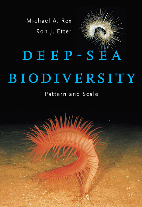 Deep–Sea Biodiversity – Pattern and Scale