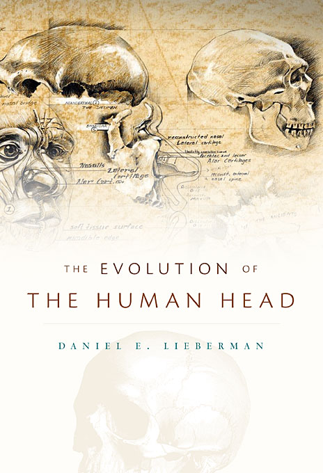 The Evolution of the Human Head the evolution of color vision