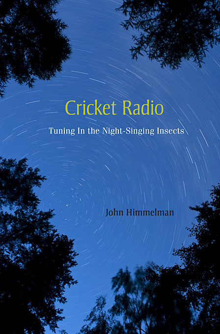 Cricket Radio – Tuning in the Nightsinging Insects cricket