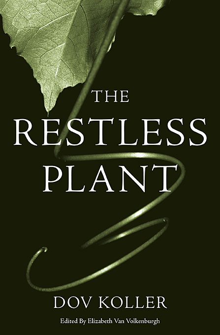 The Restless Plant accept restless