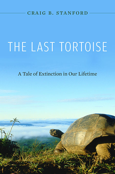 The Last Tortoise – A Tale of Extinction in our Lifetime the love of a lifetime