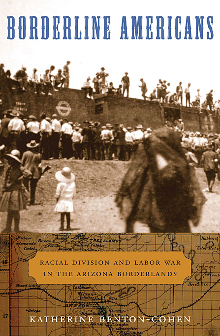 Borderline Americans – Racial Division and Labor War in the Arizona Borderlands montserrat guibernau belonging solidarity and division in modern societies