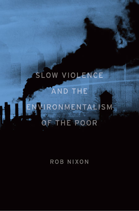 Slow Violence and the Environmentalism of the Poor rothfuss p the slow regard of silent things