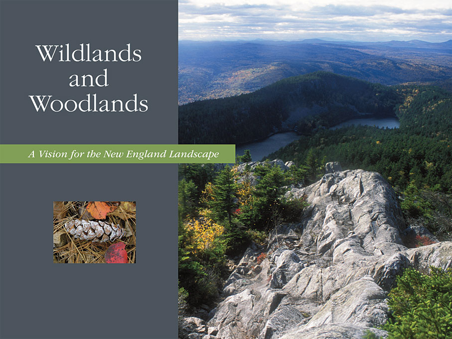 Wildlands and Woodlands – A Vision for the New England Landscape каталки coloma formula 2 без ремней безопасности