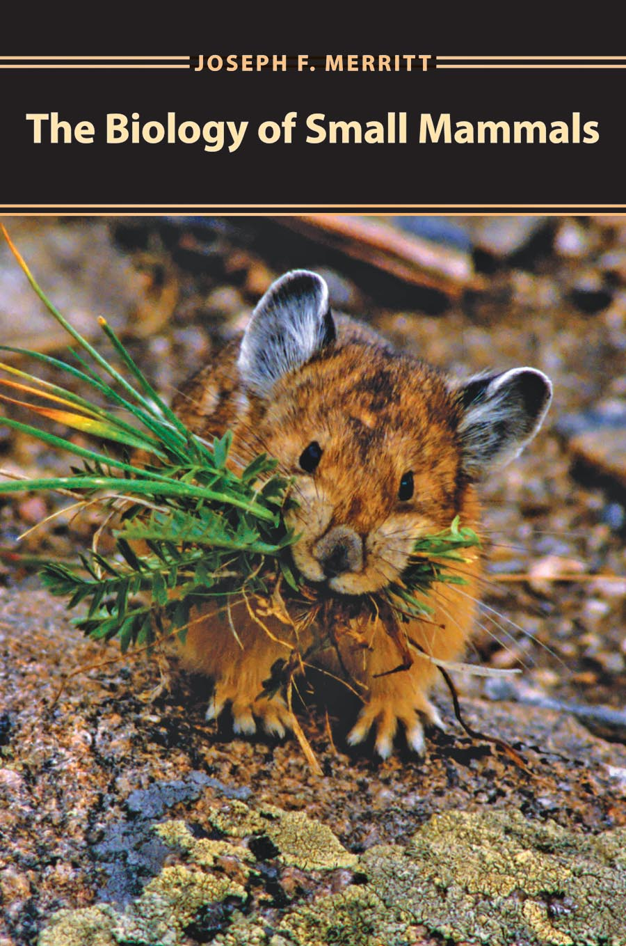 The Biology of Small Mammals the biology of psychological disorders