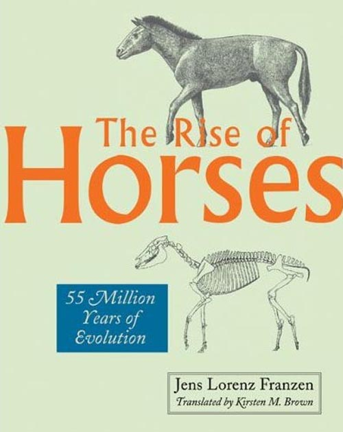 The Rise of Horses – 55 Million Years of Evolution horses