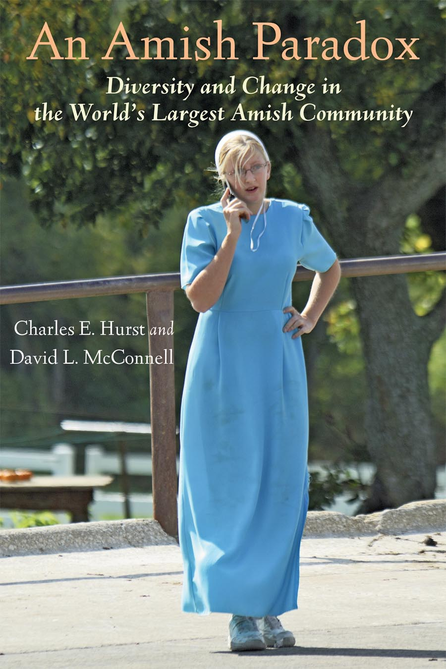 An Amish Paradox – Diversity and Change in the World?s Largest Amish Community bender community and social change in america